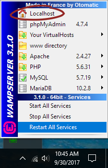 options of wampserver